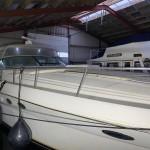 Sea Ray 460 22 | Jacht makelaar | Shipcar Yachts