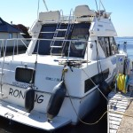 Carver 28 8   Jacht makelaar   Shipcar Yachts