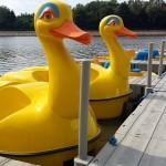 Colano Waterfietsen GERMANY | Boten kopen | Jachten verkopen | Botengids.nl