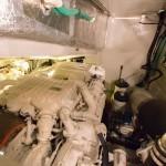 Sunseeker Predator 68 40 | Jacht makelaar | Shipcar Yachts